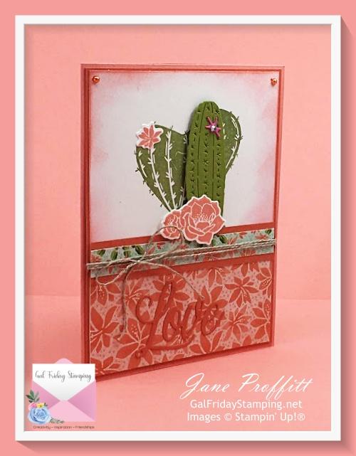 Flowering Cactus Weekly Showcase