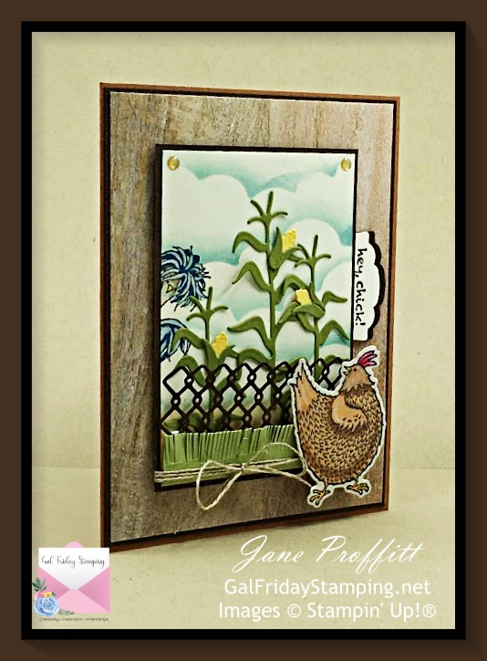 Hey Chick Bundle from Stampin' Up! is back on the funny farm today.