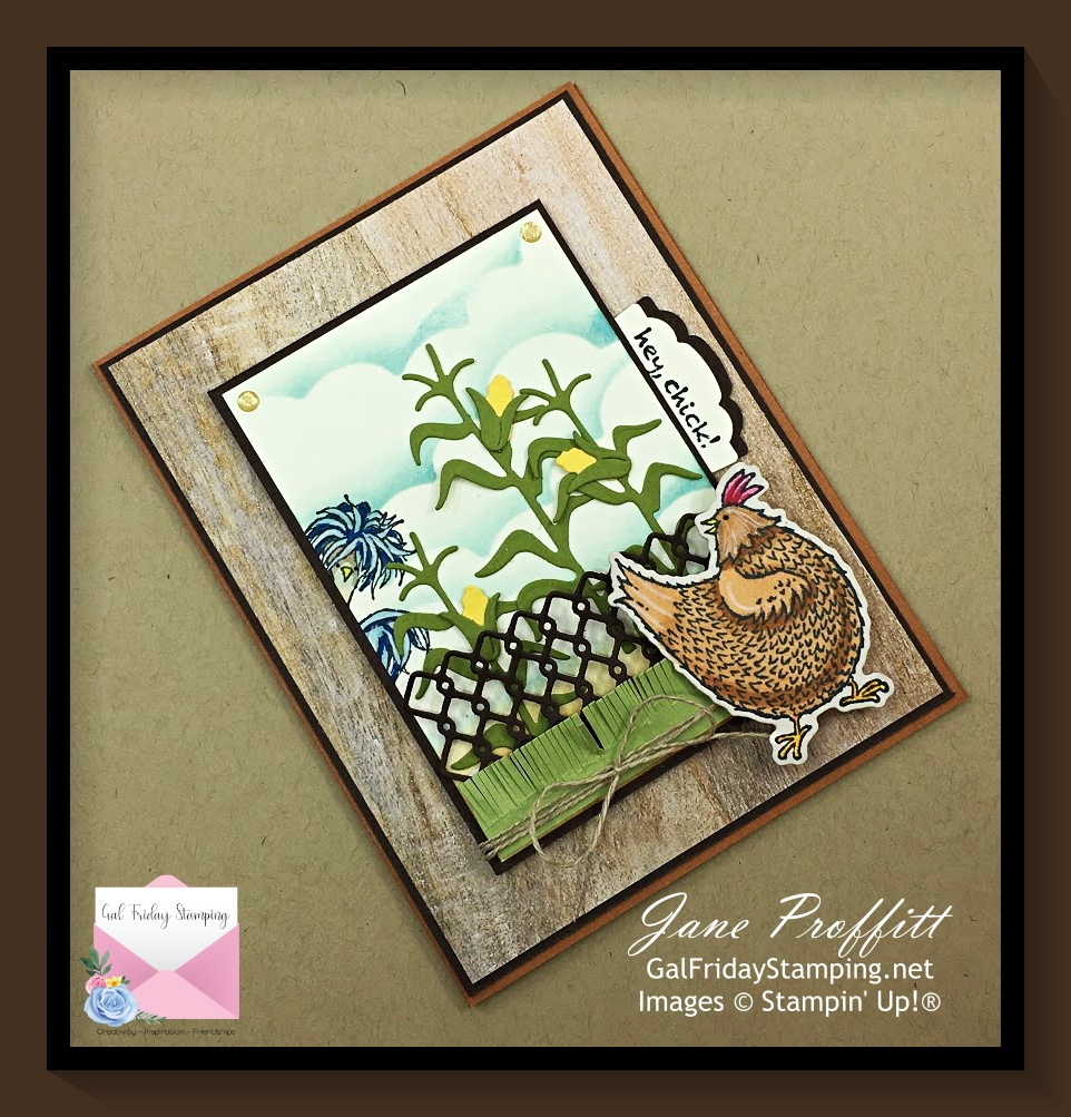 Hey Chick stamp bundle from Stampin' Up! is back on the funny farm.
