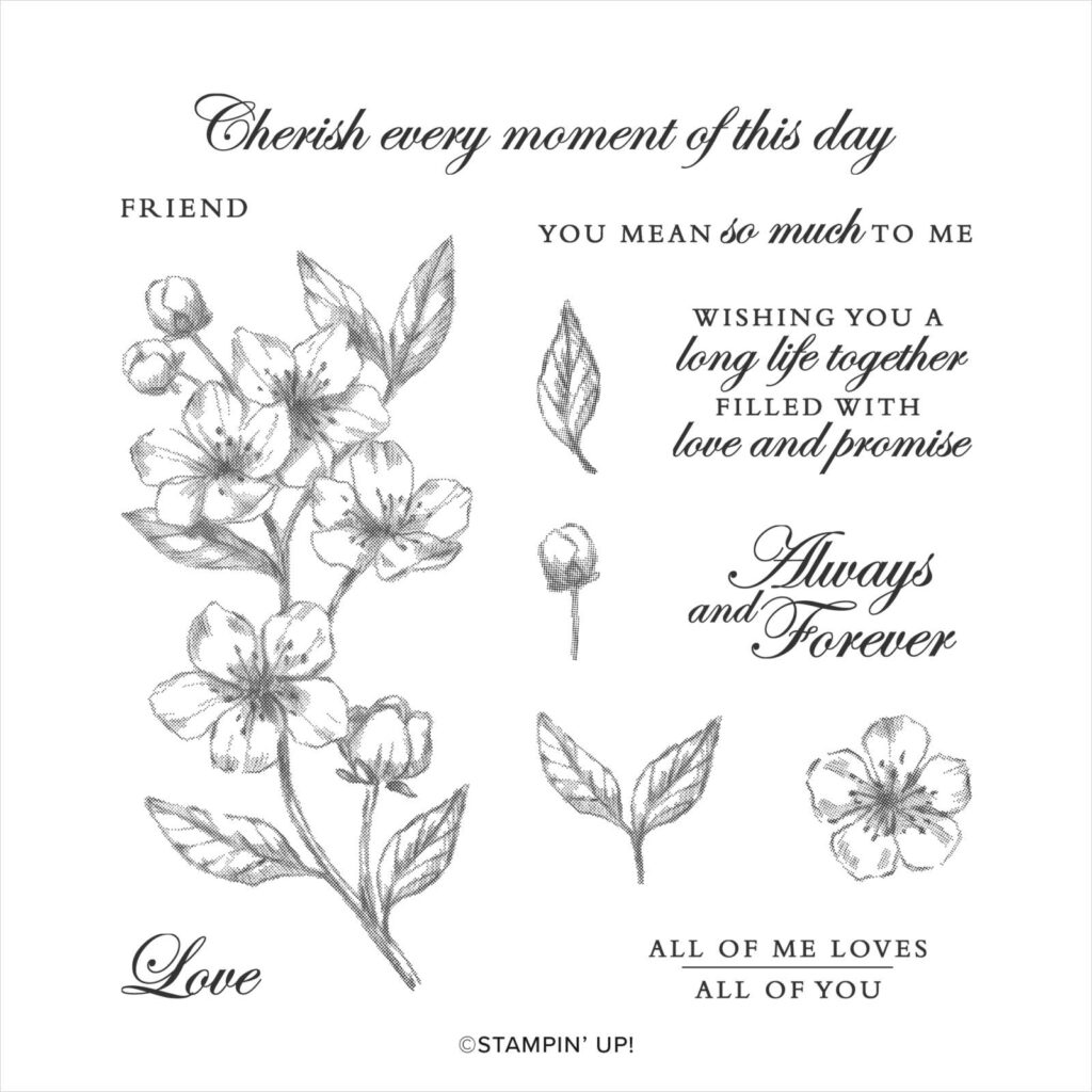 Here are the stamps included in the Forever Blossoms stamp set from Stampin' Up!