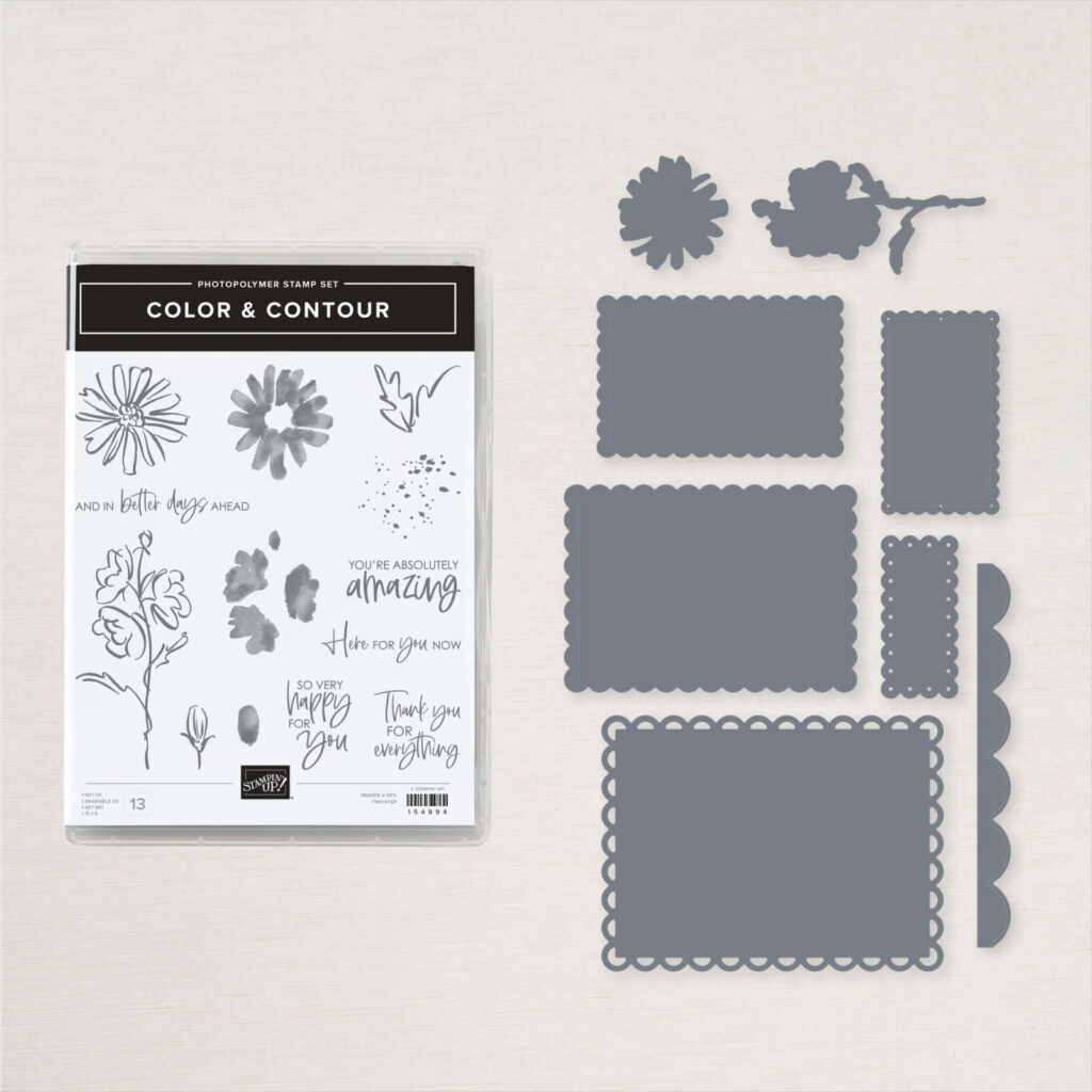 Color & Contour stamp set and coordinating dies that are now available from Stampin' Up!