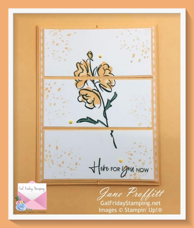 Pale Papaya, designer series paper, Color & Contour bundle fun fold cards for Thursday Night Live