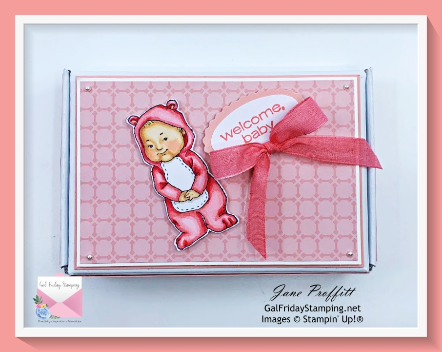 Sweet decorated mini Paper Pumpkin box using the Wildly Adorable stamp set for my Welcome Baby Gift Wednesday.