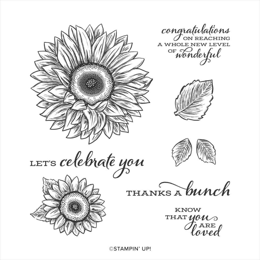 Celebrating sunflowers weekly showcase using the Celebrate Sunflowers stamp set